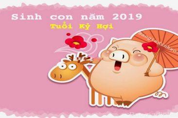 sinh-con-nam-2019-ky-hoi-thuoc-menh-gi-hop-voi-tuoi-bo-me-nao-366x244