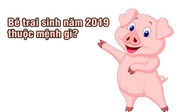sinh-con-nam-2019-ky-hoi-thuoc-menh-gi-hop-voi-tuoi-bo-me-nao4